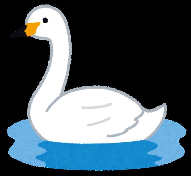bird_hakuchou.png