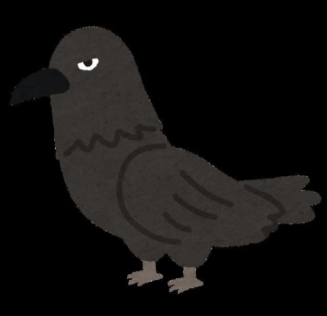 bird_karasu_kowai.png