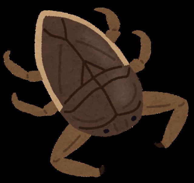 bug_tagame.png