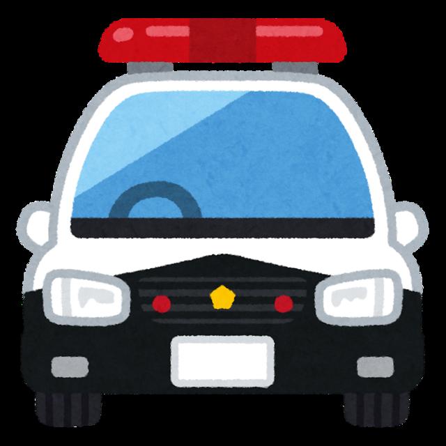 car_patocar_front.png