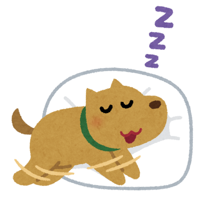 dog_sleep_run.png