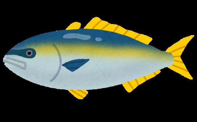 fish_buri2.png