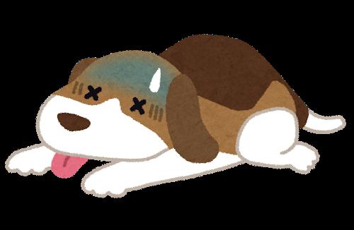 pet_byouki_dog.png